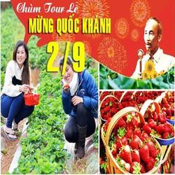 Tour du lịch Đà Lạt 3 ngày 3 đêm lễ Quốc Khánh