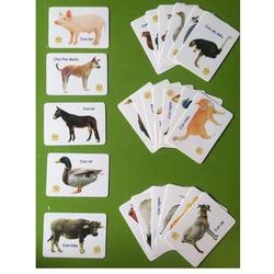 Bộ thẻ học 16 chủ đề - Bộ 416 thẻ học song ngữ thông minh cho bé