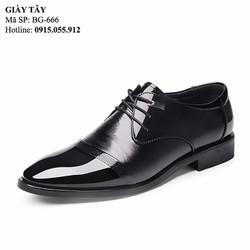 Giày da nam sang trọng