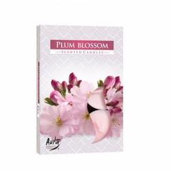 Bộ 5 hộp 30 nến tealight thơm Plum Blossom Bartek Candles FtraMart