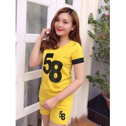 Đồ Bộ Nữ Số 58