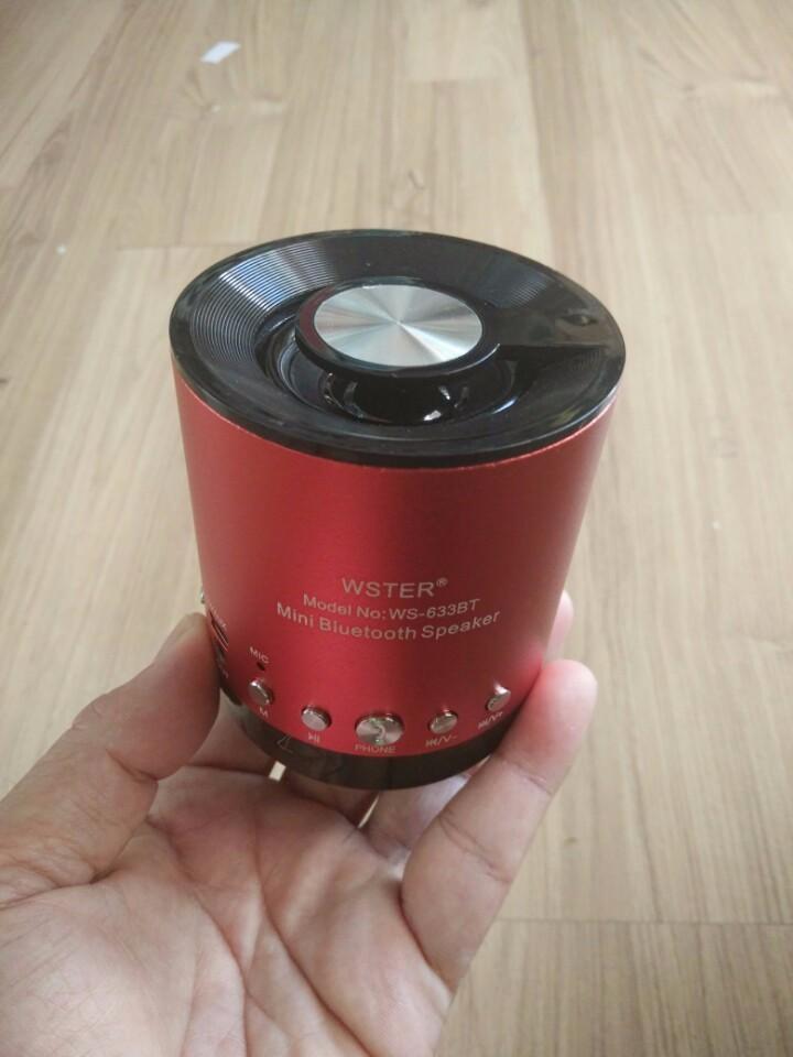 Loa Bluetooth mini WS-633 2