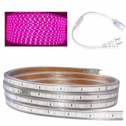Bộ 10 mét đèn Led dây 5050 màu hồng và 1 đầu nối dây nguồn