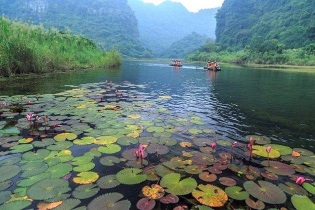 Tour Hoa Lư Tam Cốc 1N cùng Vietbamboo Travel 12