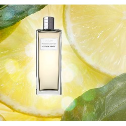 Men Collection Citrus Tonic Eau De Toilette