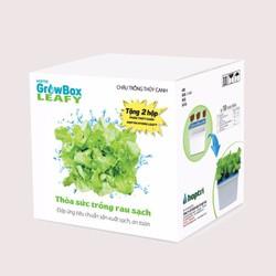 Chậu trồng rau Growbox Leafy