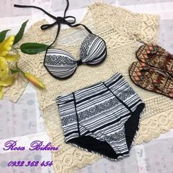 Bikini Hai Mảnh Họa Tiết Thun Cao Cấp Rosabkn64