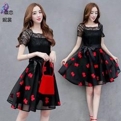 Váy Xoè Voan Kính