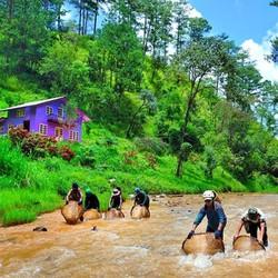 Tour Khám phá Dalat 1 ngày với những diểm du lịch mới