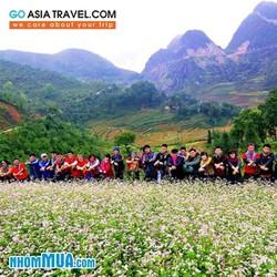 Tour Nội Bài - Hà Nội - Hạ Long -Hà Giang - Mùa tam giác mạch