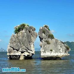 Tour Nội Bài - Hà Nội - Hạ Long - Sapa - Fansipan 4N3Đ