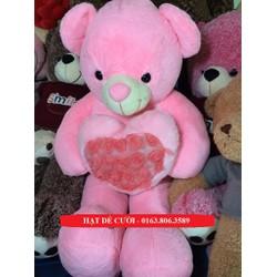 Gấu Bông Teddy Pink Ôm Tim