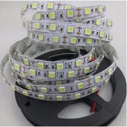 Led dây dán 5050 12v trắng