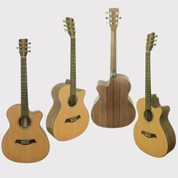 Đàn guitar ACOUSTIC SMT