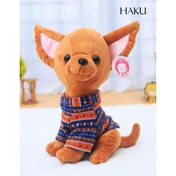 Chó Chihuahua mặc áo thổ cẩm