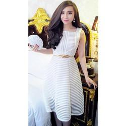 Đầm xòe ren sọc cao cấp #61004