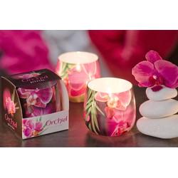 Ly nến thơm Orchid Bartek Candles FtraMart FTM-BAT1073