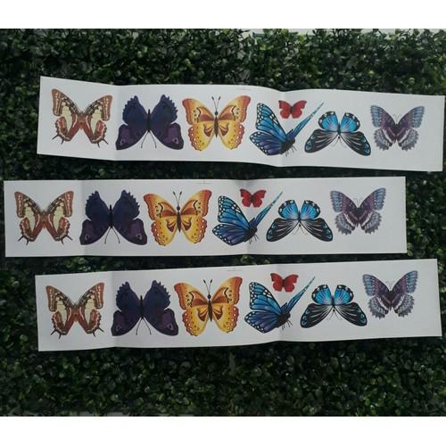 Decal dán tường set 18 bướm 3D