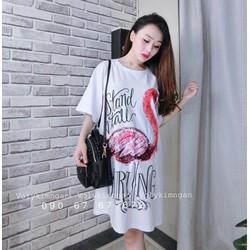 Váy Suông Hạc