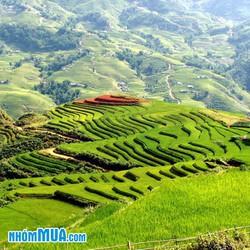 Hà Nội - Sapa 3N2Đ xe khách ngủ Homestay - APT Travel
