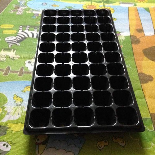 Bộ 5 khay nhựa ươm cây 50 lỗ, vỉ ươm hạt giống, khay nhựa pvc ươm hạt rau hoa - 16903668 , 6631893 , 15_6631893 , 60000 , Bo-5-khay-nhua-uom-cay-50-lo-vi-uom-hat-giong-khay-nhua-pvc-uom-hat-rau-hoa-15_6631893 , sendo.vn , Bộ 5 khay nhựa ươm cây 50 lỗ, vỉ ươm hạt giống, khay nhựa pvc ươm hạt rau hoa