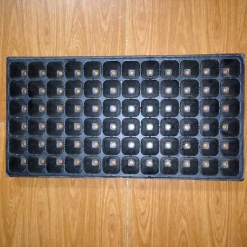 Bộ 5 khay nhựa ươm cây 72 lỗ, vỉ ươm hạt giống, khay nhựa pvc ươm hạt rau hoa - 16903669 , 6632236 , 15_6632236 , 60000 , Bo-5-khay-nhua-uom-cay-72-lo-vi-uom-hat-giong-khay-nhua-pvc-uom-hat-rau-hoa-15_6632236 , sendo.vn , Bộ 5 khay nhựa ươm cây 72 lỗ, vỉ ươm hạt giống, khay nhựa pvc ươm hạt rau hoa