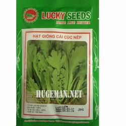 Hạt giống Cải cúc Nếp - Tặng kèm một viên kích thích nảy mầm