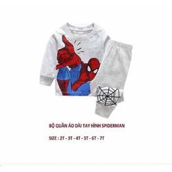 Bộ thun dài tay hình người nhện