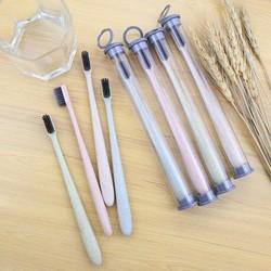 Set 5 bàn chải lúa mạch