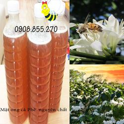 Mật ong cà phê nguyên chất - 1 lít mật ong