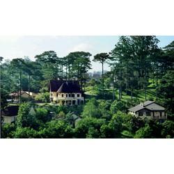 Tour Đà Lạt khách sạn 4 sao - Voucher 3N2Đ