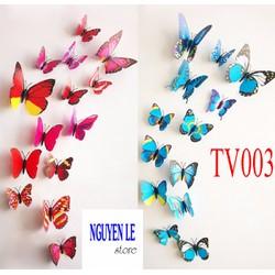 Combo 12 bướm 3D trang trí nhà cửa
