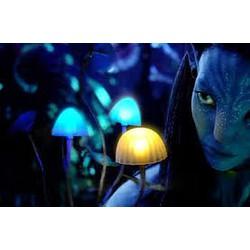 Đèn ngủ Avatar hình nấm