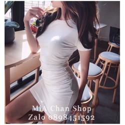 Đầm thun body