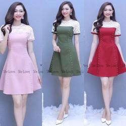 Đầm Suông Công Sở Hot