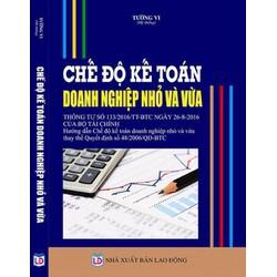Hướng dẫn thực hành chế độ kế toán đơn doanh nghiệp nhỏ và vừa