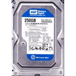 HDD Western 250Gb Blue