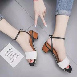 Giày gót thấp phong cách korea