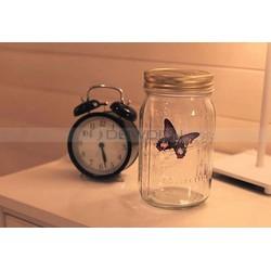 Bướm bay trong lọ - Butterfly in jar