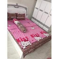 Bộ drap + 2 vỏ gối nằm cotton Kitty beo - xoanhung009