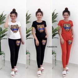 Set áo thun  quần dài hàng thiết kế - MS: S040802 Giá sỉ: 155k