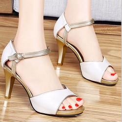 Giày cao gót thời trang quý phái  CK224