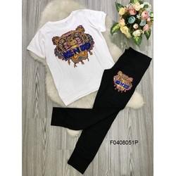 Set áo thun  quần dài hàng thiết kế - MS: S040802 Giá sỉ: 150k