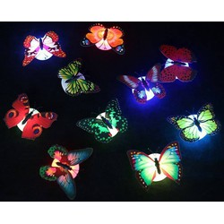 Đèn LED hình con bướm xinh xắn