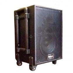 loa kéo karaoke cao cấp