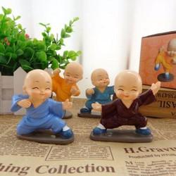 Tu Sĩ Phật Giáo Múa Võ