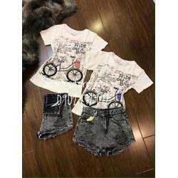 áo thun hình xe đạp
