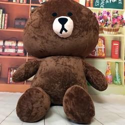 Thú bông gấu bông gấu brown 95cm