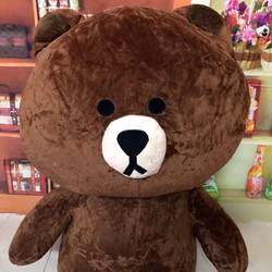 Thú bông gấu bông brown 1m4
