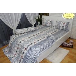 Bộ drap cotton Thắng Lợi kèm mền